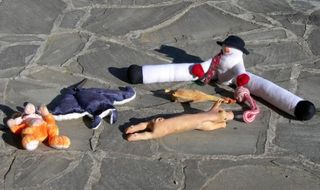 A Selection of Our Dogs Toys